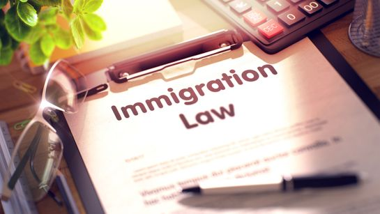A immigration law document that is being used to help a client